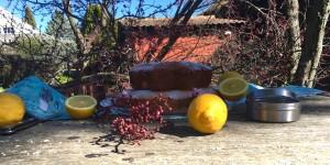 Pastel de limón y semillas de amapola.